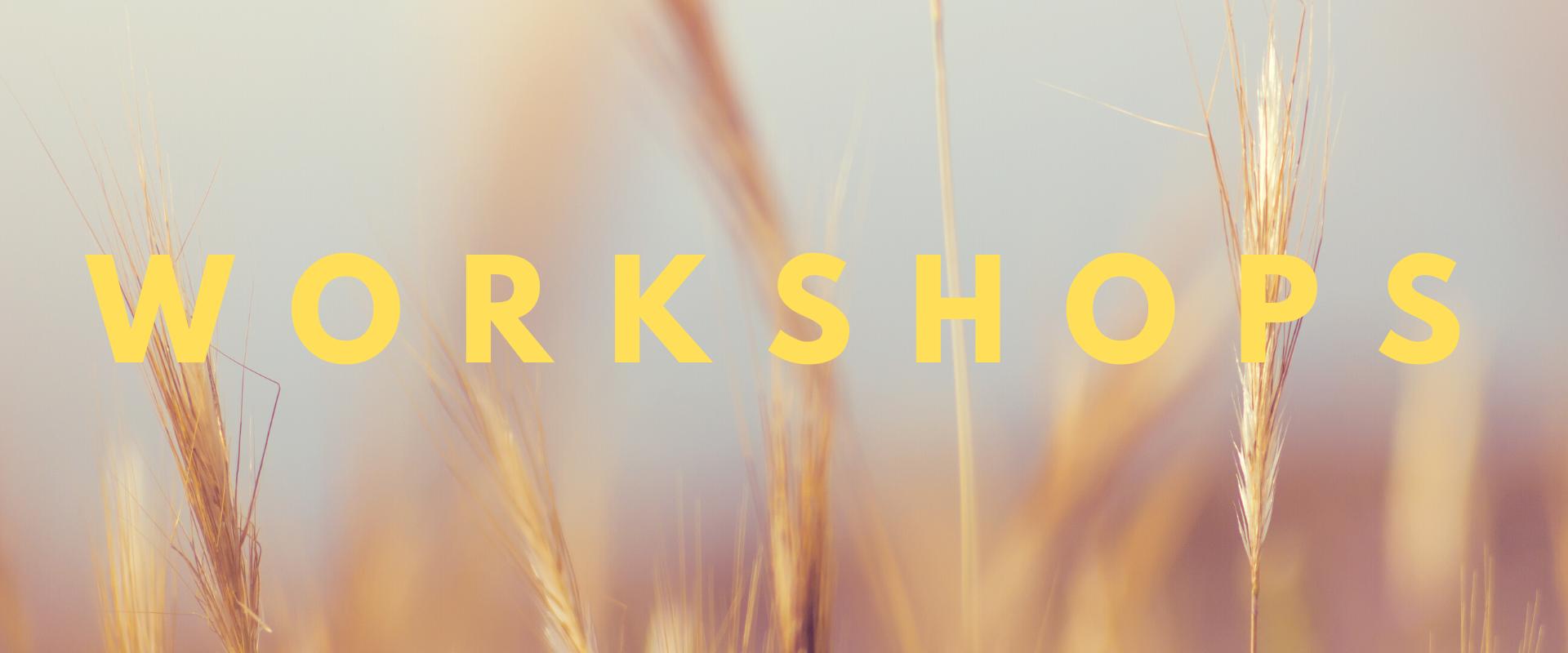 Wannabee workshops